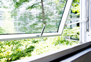 Modern office windows with garden view.